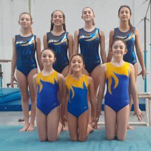 Torneo Provincial de Clubes de Gimnasia Artística Femenina, niveles C y D